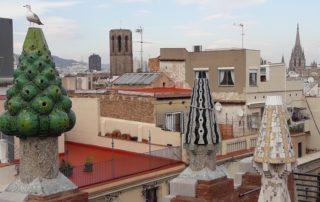 Gaudí Güell private tour