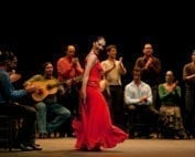 tapas and Flamenco show